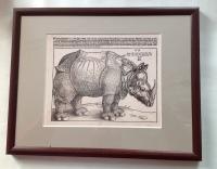 Albrecht Dürer: Rhinocerus 1515 - Kopie aus dem British Museum