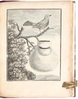 Sonnerat, P.: Reise nach Ostindien und China vom Jahr 1774 bis 1781