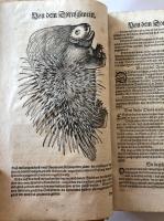 Gessner, Conrad: Thierbuch, 4 Werke in 1 Bd. 1598-1613